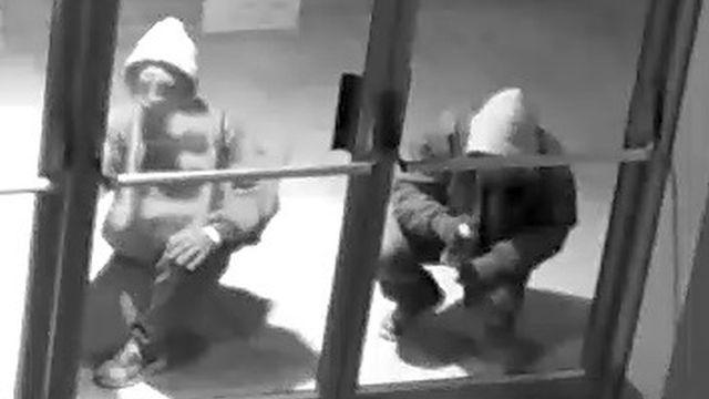 Police hope surveillance photos will help their investigation of school vandalism.