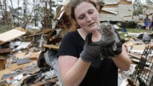 Prepare your pets for a natural disaster